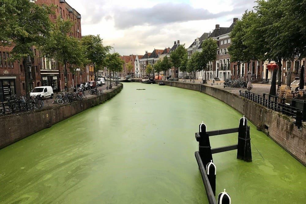 De gracht in de binnenstad van Groningen is groen, zag ik tijdens een ochtendwandeling op mijn eerste dag als ondernemer
